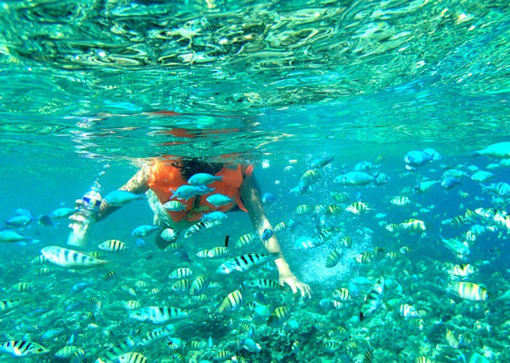 the best snorkeling